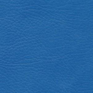 Blue Batani